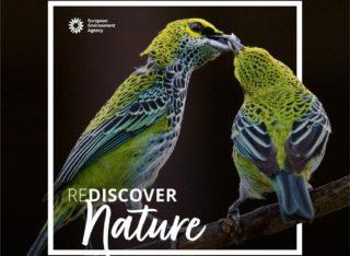 REDISCOVER Nature, le concours photo 2020 de l'agence européenne pour l'environnement - Championnat d'Europe 2020
